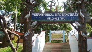 Vedanthangal Bird Sanctuary Chennai, SRM Hotel Chennai