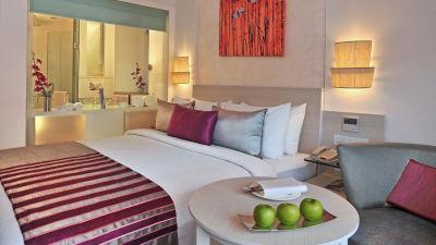hotel rooms near AIIMS Delhi, hotel rooms near Green Park Delhi, hotel in Delhi near AIIMS 3