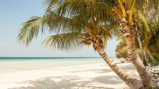 places to visit in Pondicherry Le Dupleix hotel in Pondicherry 3