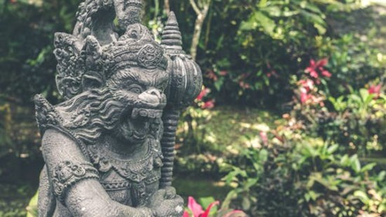 Niraamaya promotes cultural immersion