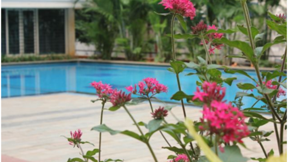 Sherwood Suites  Swimming Pool 2 Sherwood Suites in Marathahalli