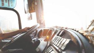 ramnagar bus stop the golden tusk nainital