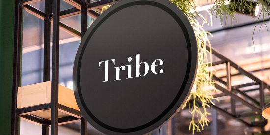 Renest-gandidham-Tribe