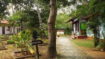 abad-turtle-resort-ayurvedic-cottage, Contact Beach Resort in Marari, Beach resorts in Allepey, 4 Star Resorts in Alleppey, Best Beach Resorts in Alleppey, Best Beach Resorts Near Cochin, Beach Resorts in Kerala