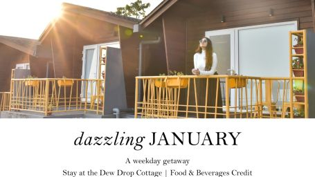 Dazzling January Package