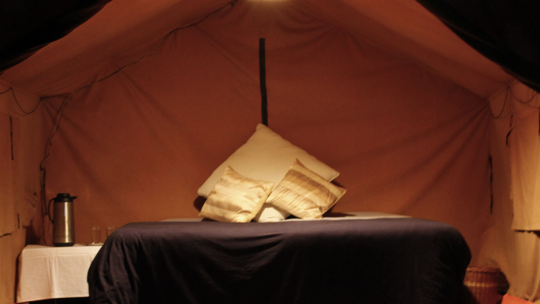 Let s Camp Junga Deluxe Tent