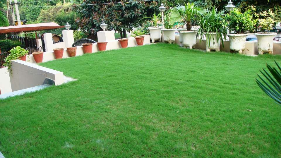 Hotel Kashish Residency & Banquet New Delhi And NCR DSC04236