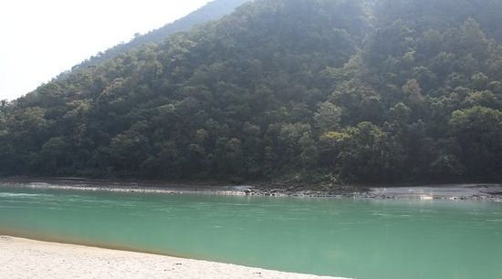 beach aloha on the ganges rishikesh