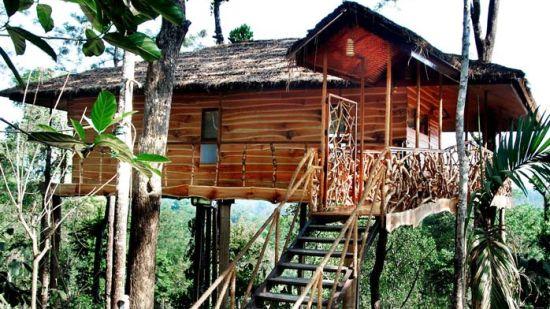 Tranquil Resort, Wayanad Wayanad tranquil
