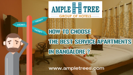 Ample H Tree Group of Hotels  summery