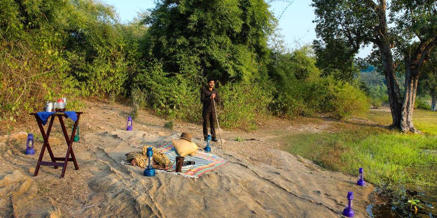 alt-text Rosa Bandhavgarh Meadows, Bandhavgarh Jungle Lodge, Bandhavgarh Resort 40