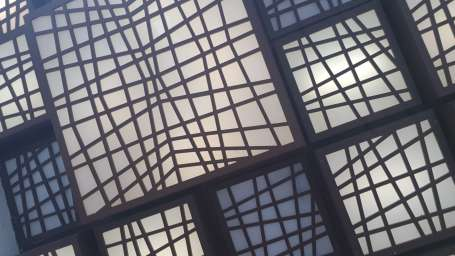 Pattern, Dragonfly Hotel, Andheri Hotel near Airport