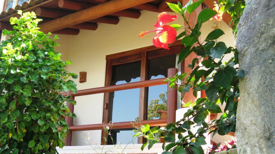 Casa Solana Zihuatanejo Ceiba terrace Solana BandB Zihuatanejo Mexico