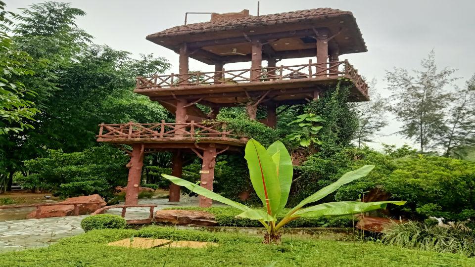 Machaan View