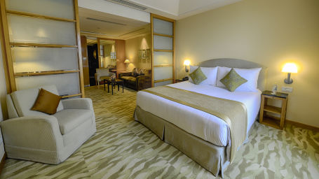 Room, Rooms in Delhi, The Grand New Delhi-11