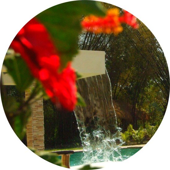 Hotel With Swimming Pool In Coorg, Amanvana Resort And Spa, Coorg Resort