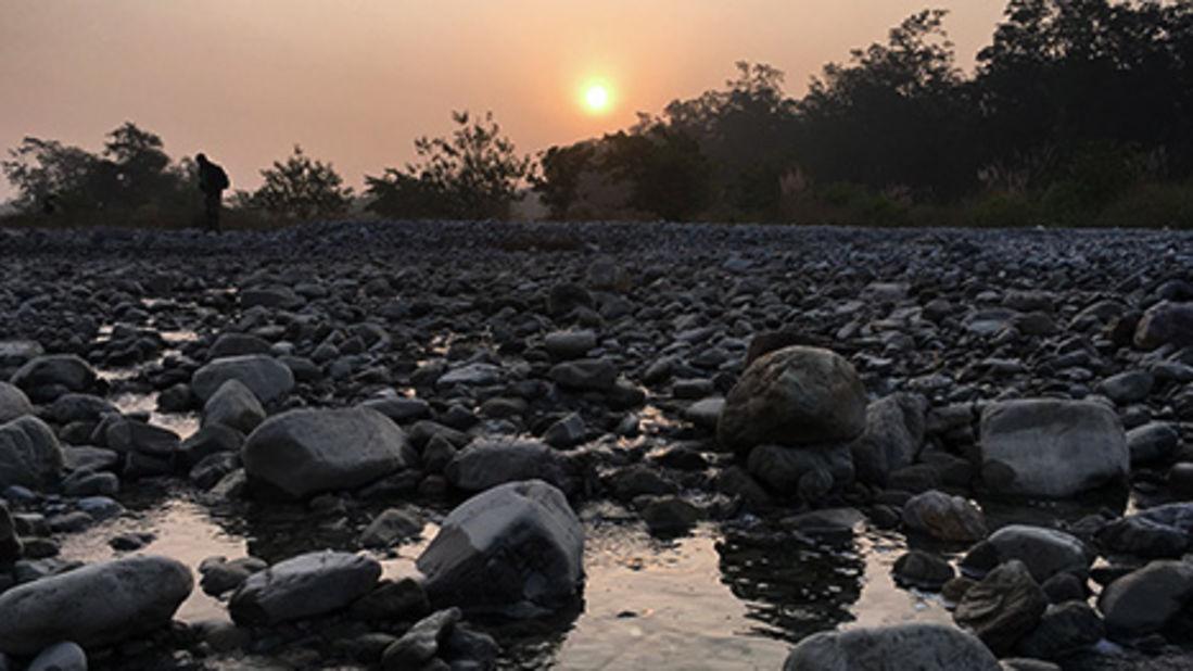 Corbett Wild Iris Resort in Ramanagar Images 1