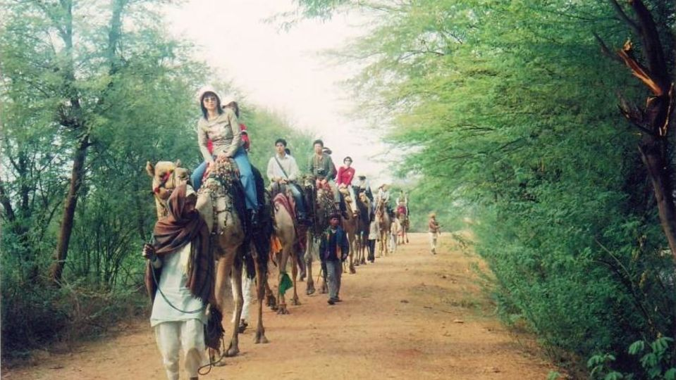 Camel Safari at Umaid Lake Palace Hotel Kalakho Dausa Rajasthan