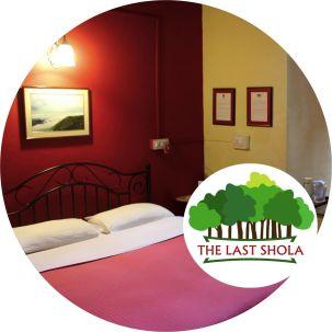 The Last Shola wsufd7