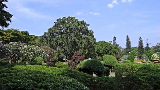 lalbagh-botanical-garden-332535 960 720