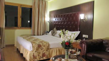 Superior Double King Size Hotel Ritz Plaza Amritsar