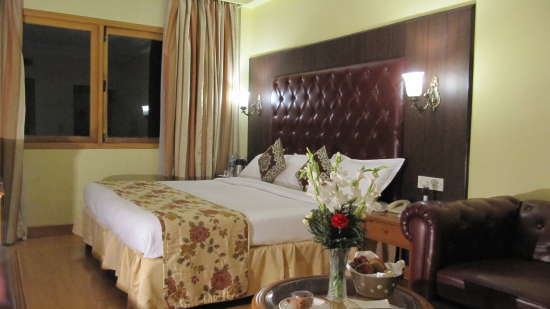 Superior Double King Size Hotel Ritz Plaza Amritsar