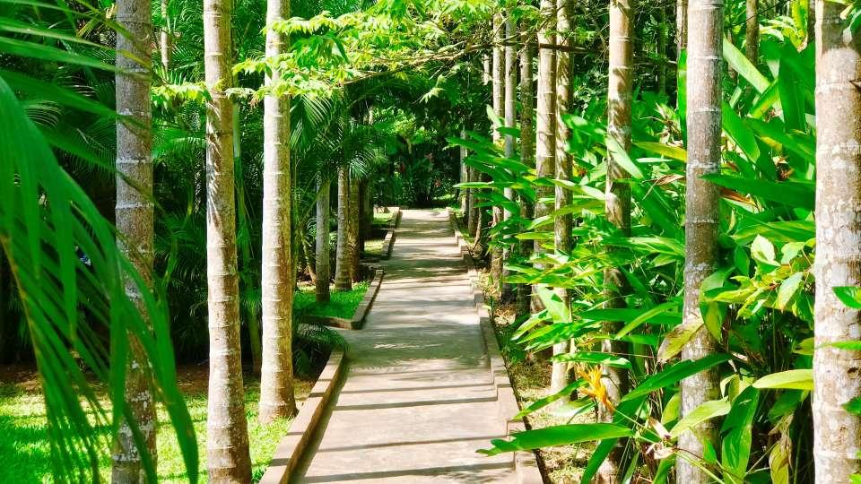 Parampara Resort & Spa, Kudige, Coorg Coorg IMG 2229