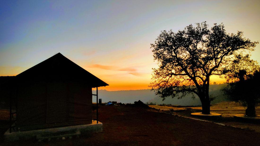 Let s Camp Tamia Standard Tent Sunrise