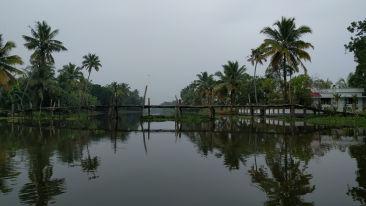 Kumarakom  24202340071