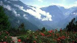 Location Mussoorie