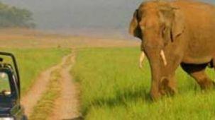 Location Rajaji National Park