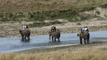 Tiger Camp Resort, Corbett Uttarakhand Elephant Safari Corbett2