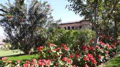 Facade_ Tijara Fort-Palace - 19th Century Alwar. Palace Hotel In Rajasthan 2