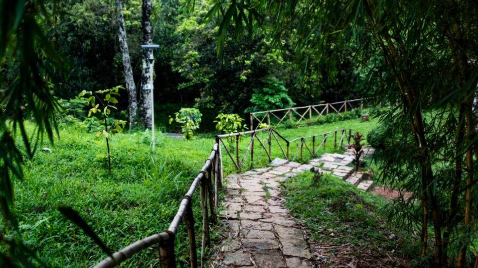 Rooms in Wayanad, Best Resorts in Wayanad, Nature Resorts in Vythiri 23