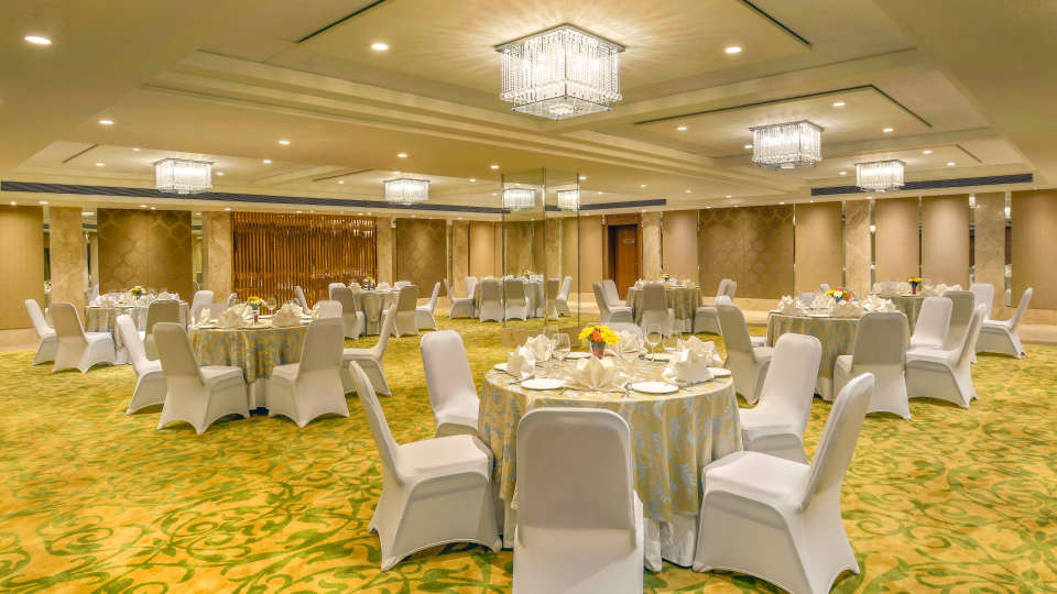 Banquets The Muse Sarovar Portico Kapashera New Delhi 3