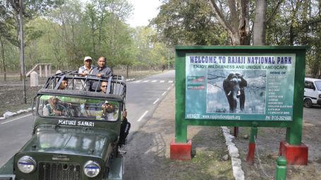 Forrest Rajaji National Park Resort Dehradun  Rajaji National Park Dehradun