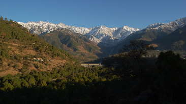 800px-A view of Palampur Himachal Pradesh India