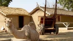 Village life - Kalakho