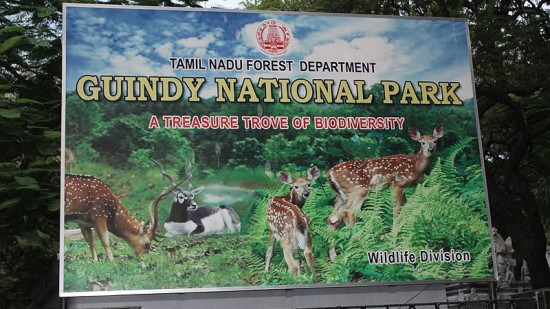 Guindy National Park Board
