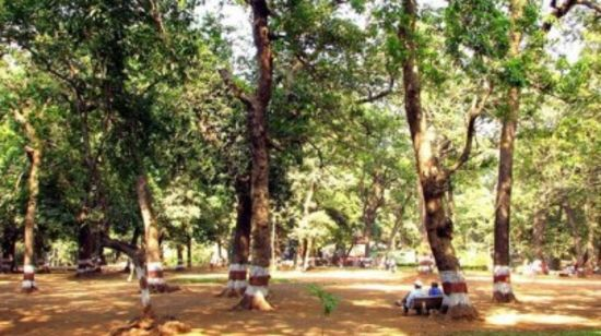 Ryewood Park Zara s Resort Khandala Places To Visit In Khandala 111