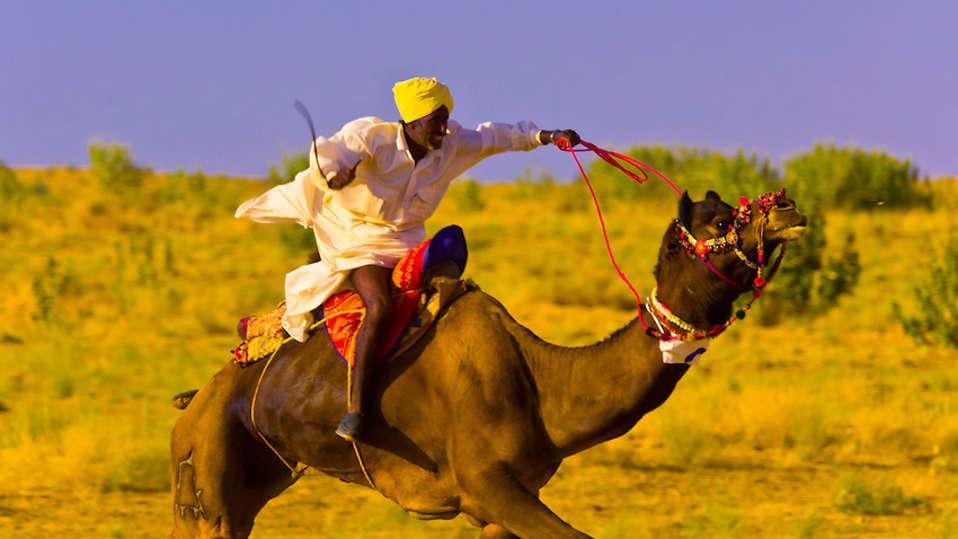 Camel Race at Umaid Lake Palace Hotel Kalakho Dausa Rajasthan