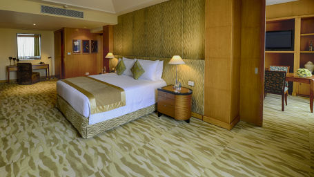 Presidential Suite at The Grand New Delhi Hotel on Nelson Mandela Road 103