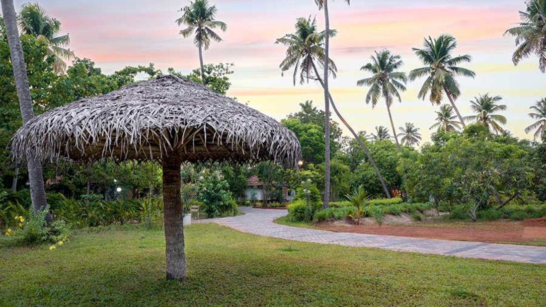 abad-turtle-resort-garden-hut-greenery, Contact Beach Resort in Marari, Beach resorts in Allepey, 4 Star Resorts in Alleppey, Best Beach Resorts in Alleppey, Best Beach Resorts Near Cochin, Beach Resorts in Kerala
