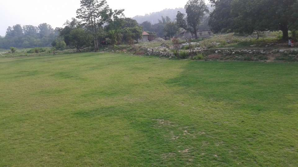 Tiger Camp Resort, Corbett Uttarakhand 20150626 165656