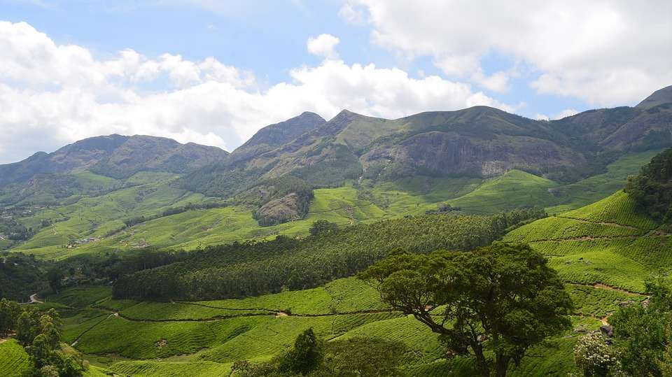 Munnar near Niraamaya Retreats Cardamom Club Thekkady