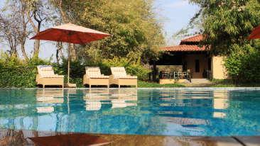 Swimming Pool at Infinity Resorts Bandhavgarh, Hotels in Madhya Pradesh 2