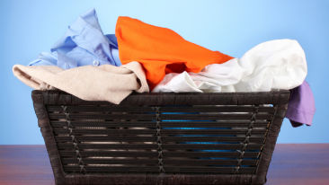 Hotel Hari Piorko New Delhi Laundry