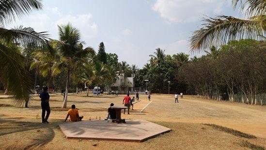 Fantasy Golf Resort Cricket