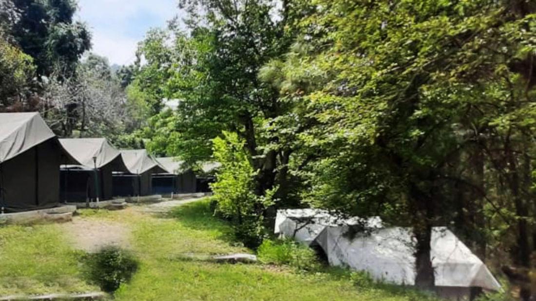 Let s Camp Junga Tents 2