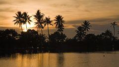 thekkady Poetree Sarovar Portico places to visit in Kerala